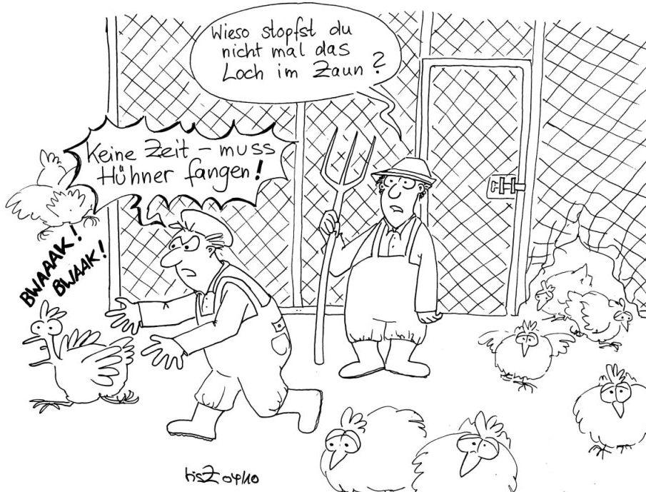 Hühner fangen statt Loch im Zaun stopfen